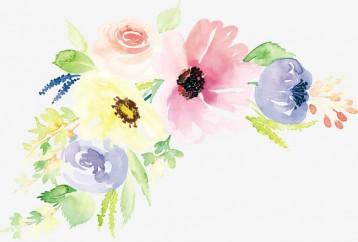 zvetu 2